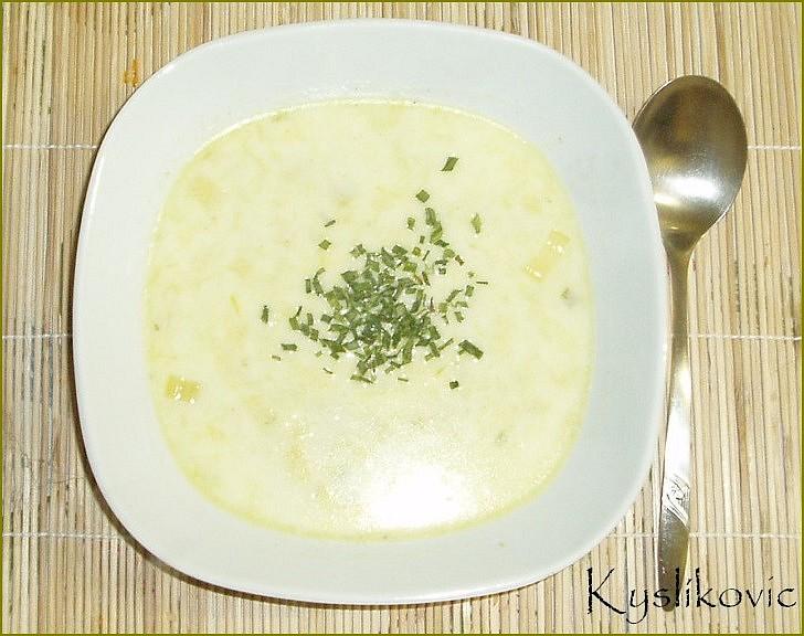 Jemná pórková polévka