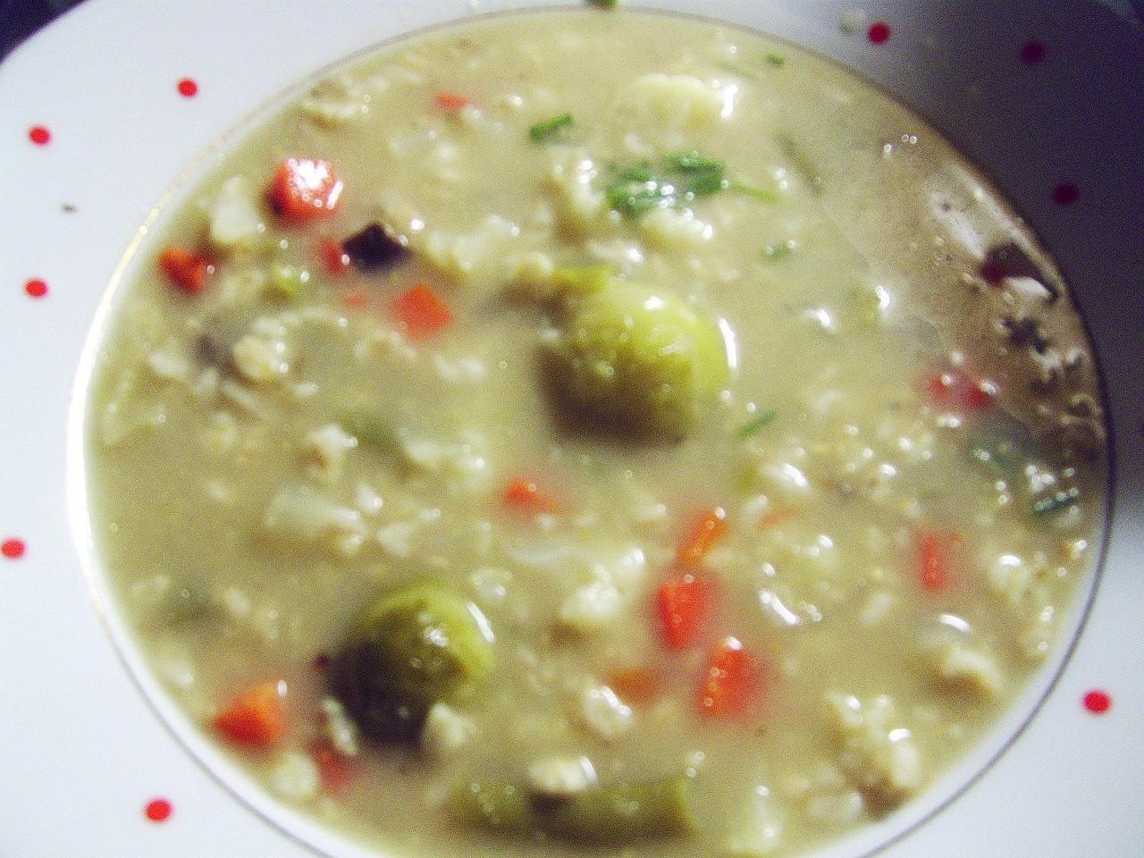 Polévka čtyřsurovinová (zelenina,droždí,ovesné vločky,houby)