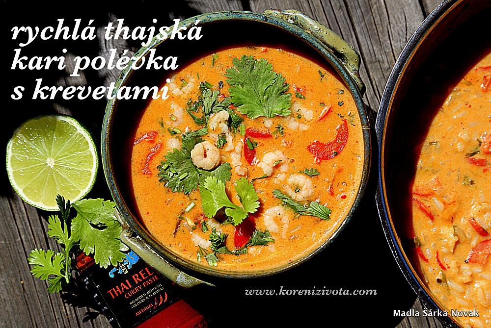 Rychlá thajská kari polévka s krevetami